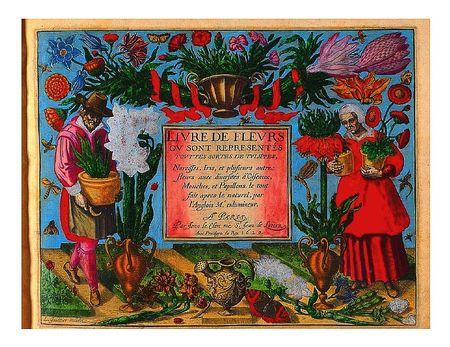 Livres-de-fleurs-1620-color-title-page