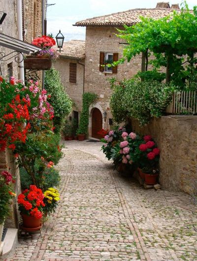 Cobblestone-street-with-flowers-deanna-keahey