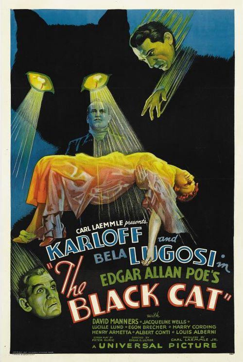 1934-black-cat