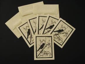 Crow290